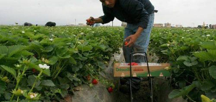 Migrantes, motor de crecimiento económico y desarrollo sostenible
