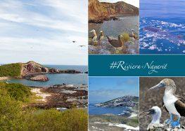 Ver para creer en Riviera Nayarit: Isla Isabel, un santuario de la naturaleza