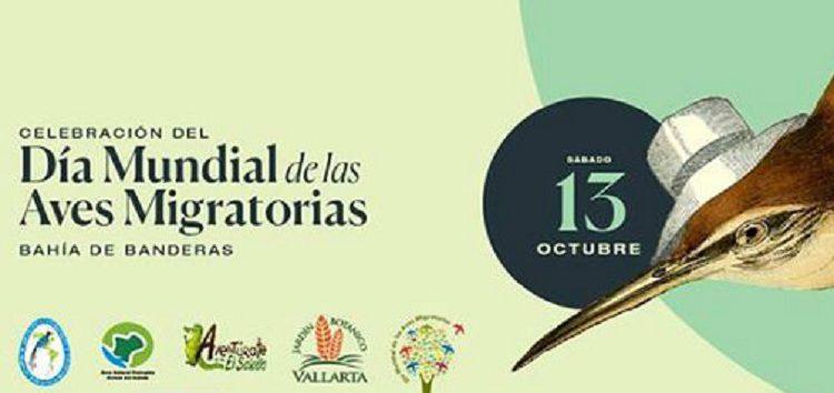 Celebrarán en la Bahía de Banderas el Día Mundial de las Aves Migratorias